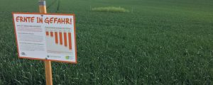 IG Pflanzenschutz befürchtet Aus für Kleinbauern