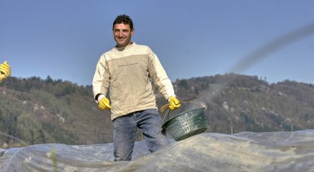 Bauern gehen die Saisonarbeiter aus