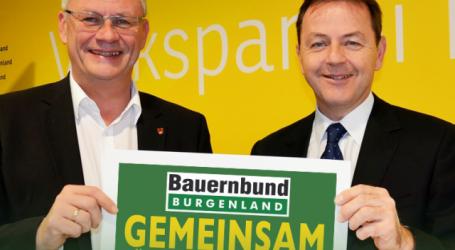 Berlakovich wird Präsident der burgenländischen Kammer