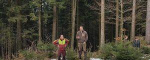 Wildschadensberatung in OÖ gut angenommen