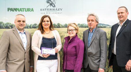 Biofeldtage bei Esterhazy sollen Institution werden