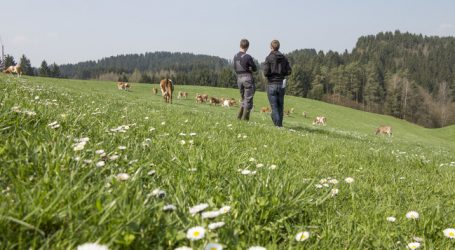 LK Vorarlberg will besser kommunizieren