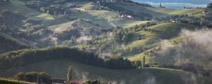 Weinbau: Steiermark steigt ins DAC-System ein