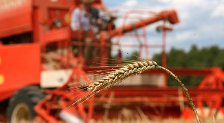 Getreideernte im Burgenland weitgehend abgeschlossen