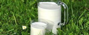 Milchproduktion stieg 2017 erneut