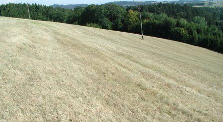 Reisecker fordert öffentliche Hilfe für Grünlandbauern