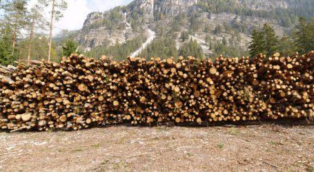 Rundholzlager in ganz Österreich voll