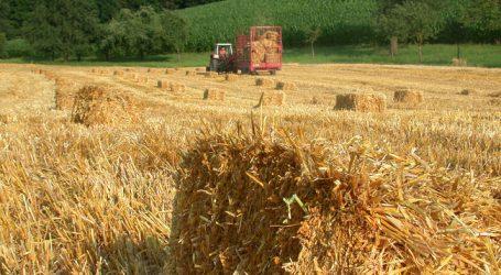 Bauernbund gegen Kürzungswünsche der SPÖ Burgenland
