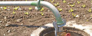 Fristen für Bewässerungs-Bewilligungen verlängert