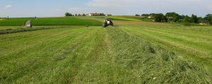 Grüner Bericht: Bauerneinkommen stieg erstmals wieder