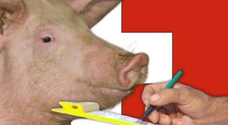 Schweiz schafft Exportbeiträge ab