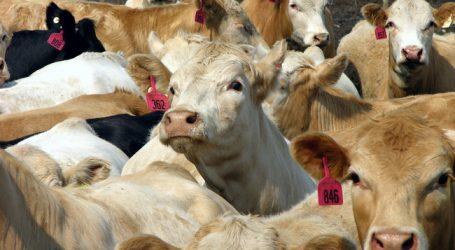 Trump lässt Hilfen für Farmer auslaufen