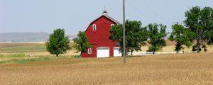 US-Farmer erhalten Milliardenhilfen