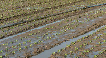 Tiroler Gemüsebau künftig nur mit Bewässerung