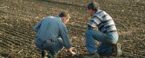 Burgenland: Auch SP-Bauern gegen Kürzungen
