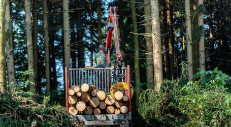 Holzkraftwerke brauchen Nachfolgetarife