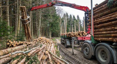 Niederösterreich verlängert Ausnahme für Holztransporte
