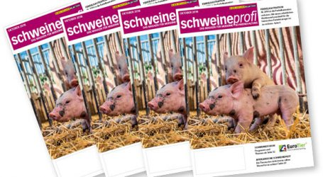 Großer Wurf von BLICK INS LAND und DLG: neuer schweineprofi