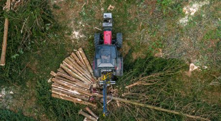 Fichtenholzlager weiter prall gefüllt