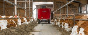 Milchpreise überschreiten Höhepunkt