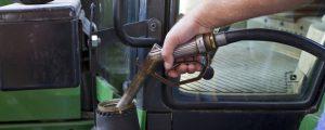 Biodiesel aus Palmöl in der Kritik