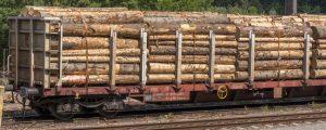 Rail Cargo und Holzindustrie teilen sich Abfuhr-Mehrkosten
