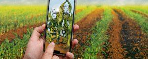 Digitalisierung bringt Bauern nicht nur Vorteile