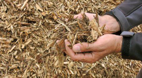 Biomasse-Grundgesetz: Bundesländer am Zug