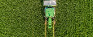 Talfahrt der Weizenpreise geht weiter