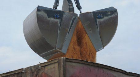 Juncker-Zusage: Soja-Einfuhren aus den USA massiv gestiegen