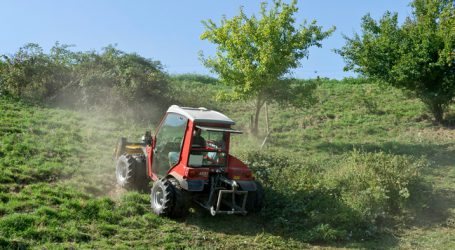 Bio-Flächenanteil in Vorarlberg gering