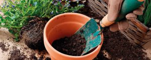 Mit Multikraft ins Gartenjahr starten
