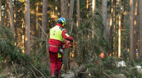 OÖ: Mehr als eine Mio. für Forstwirte aus dem Katastrophenfonds