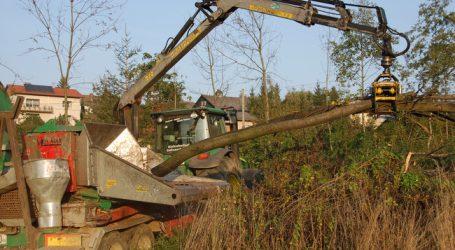 Biomasse-Grundsatzgesetz: Bundesländer am Zug