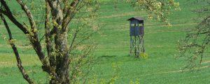 Oberösterreichs Jäger dürfen Schalldämpfer verwenden