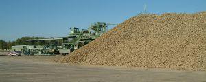Verluste beim Zucker belasten Agrana-Bilanz