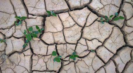 Klimawandel: Herausforderung, aber auch Chance