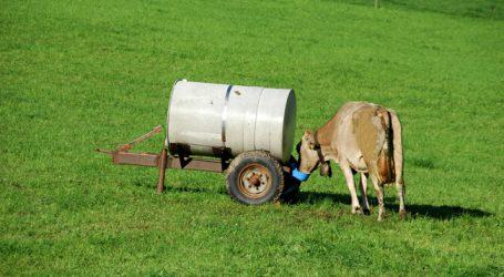Dürresituation prägte Vorarlberger Milchjahr