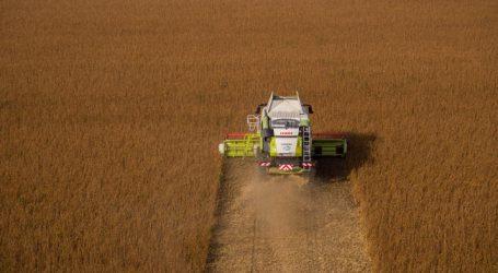Sojaflächen in Österreich erneut ausgeweitet