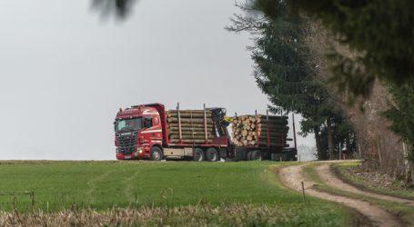 Holzindustrie senkte Importe um zehn Prozent