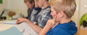 100 % Bio in Burgenlands Kindergärten und Schulen bis 2024