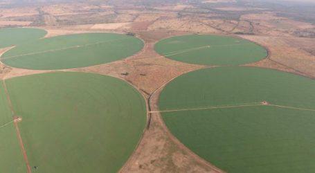 Köstinger und Anschober gegen geschwächte EU-Pestizidvorschriften