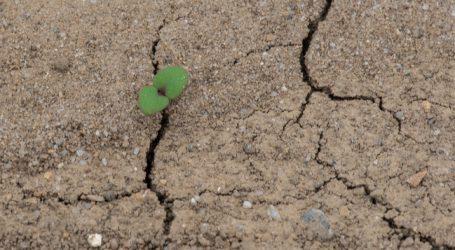 Fünf agrarpolitische Forderungen für den Klimaschutz