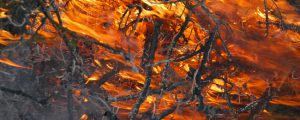 Russland: Riesige Waldflächen stehen in Flammen