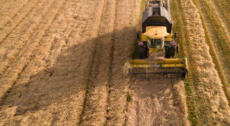 Regen im Mai rettete die Getreideernte