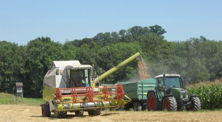 Deutsche Erntemengen schmelzen hitzebedingt dahin