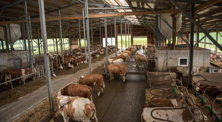 Milchbauernschwund in der Schweiz