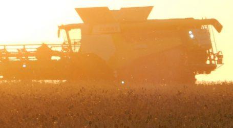 Deutsche Bauern befürchten Strukturbruch wegen Klimapaket