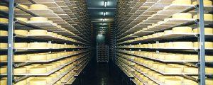 Bergland Käse in Bergamo mehrfach ausgezeichnet
