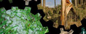 GAP mit Klimaschutz enger verzahnen